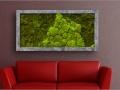 Green Wall kantoorbeplanting