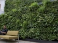 Natural Wall kantoorbeplanting
