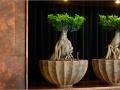Polystone Rock natuurlijke plantenbakken in bijv. foyer, lobby of ontvangsthal