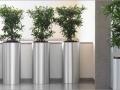 President Zuil plantenbakken voor bijv. foyer of receptie